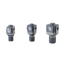 EAR Series Check valve Regulator(R)