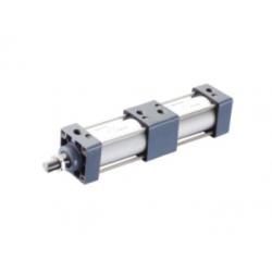 ESCT Standard Cylinder(Double Stroke Type)